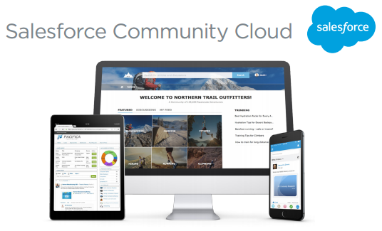 Salesfroce-community-cloud-service-client